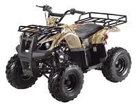 Utility                         ATV