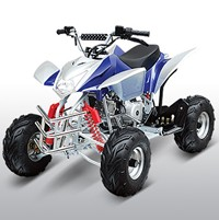 ATA110H1 110cc Sport Small wheel