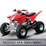 300cc Sport ATV