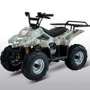 ATA-110B3 110cc fully automatic Large tires remote and rack