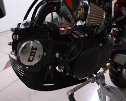 125cc engine Apollo