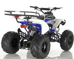 125cc Quad Sportrax Apollo