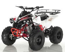 Wholesale Sportrax 125cc quad