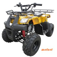 110CC ATV 516