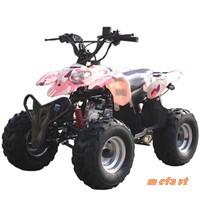 Bashan 110cc Sport ATV517