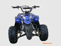 110cc ATV Prowler front view