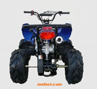 110cc ATV Rear View