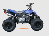 110cc ATV Prowler side view