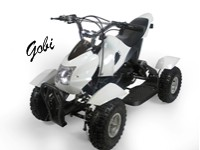 Electric ATV Gobi