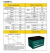 6-DZM-12 Battery Information