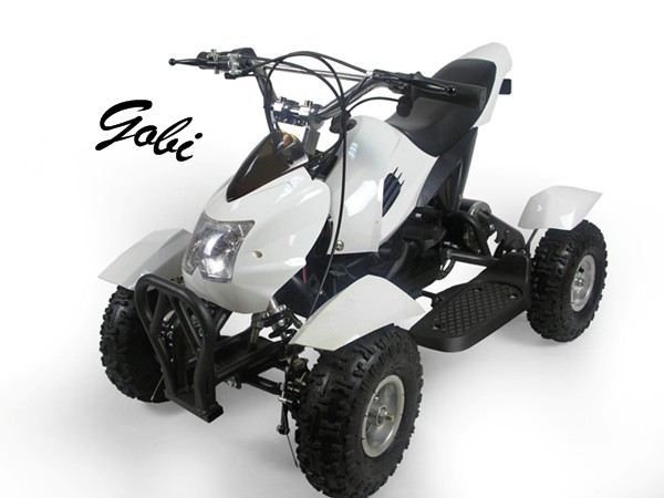 Gobi electric ATV