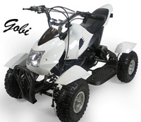 Wholesale Electric ATV Gobi
