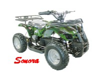 Electric ATV Sonora