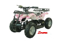36 Volt ATV