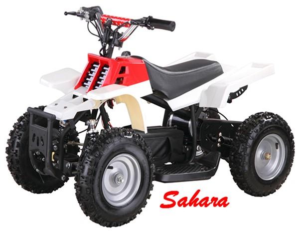 500 Watt Electric ATV