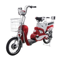 48V Electric Bicycle