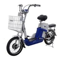 36V Bicycle