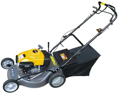 5 HP Bagger Push Mower