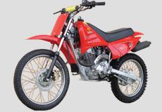 100cc Dirtbike LF100GY-B