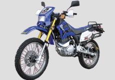 Lifan 200cc LF200GY-2