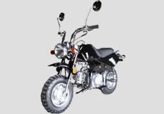Lifan 50cc Minibike LF50QGY-2