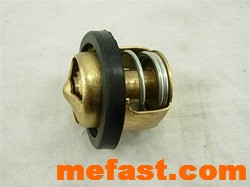 250cc Thermostat