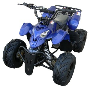 ATV Sale $435.00 110cc