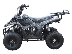 Black Spider ATV-06 110cc