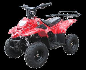 ATV-06