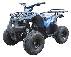 Blue Spider 110cc ATV-07