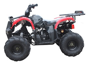 110cc ATV-07 Red and Black