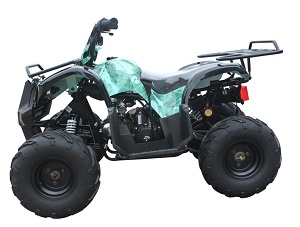 Barb Wire Green 110cc ATV-07