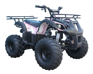110cc ATV-08 Pink Barbwire