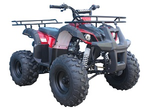 110cc ATV-08 Red