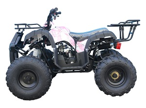 110cc ATV-08 Barb wire pink