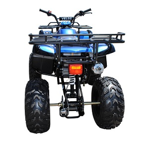 150cc ATV-10 rear view